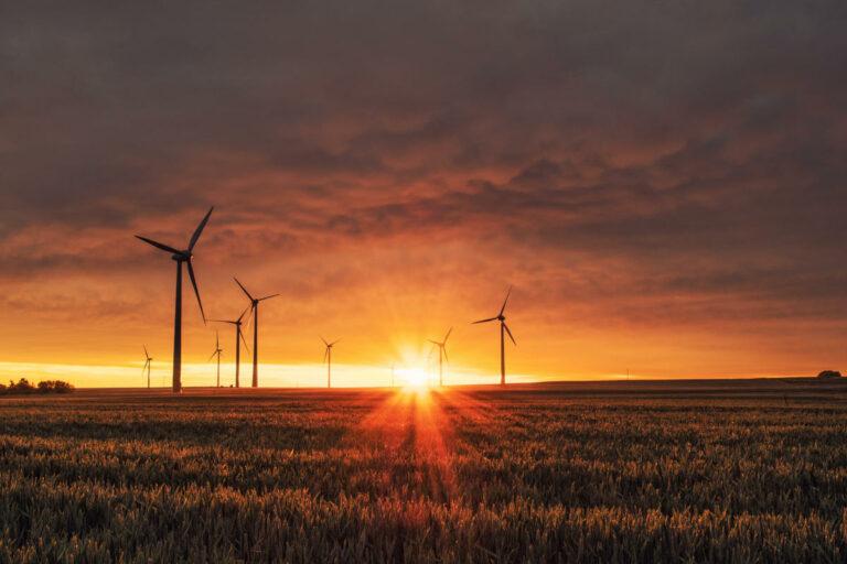Turbine eoliche a Biedesheim, Germania (Foto: Karsten Würth)