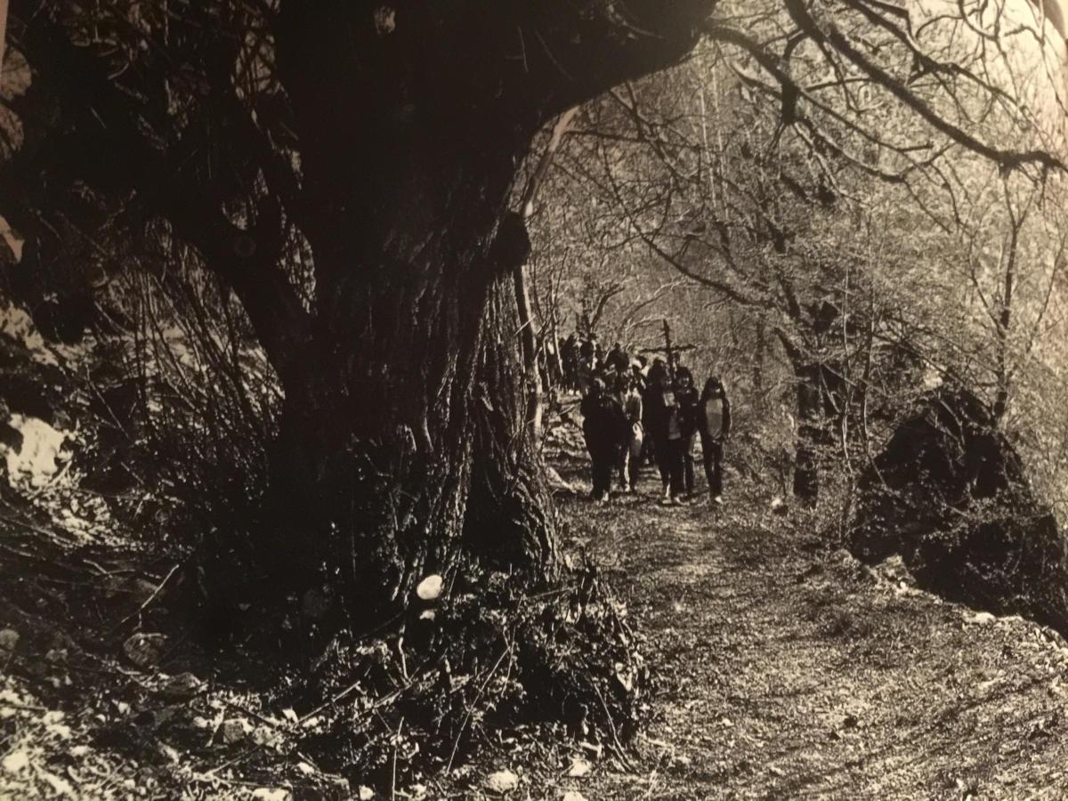 Pepi Merisio - Passaggio su un sentiero nei boschi ancora spogli di vegetazione. La processione si tiene tradizionalmente la prima domenica di maggio.