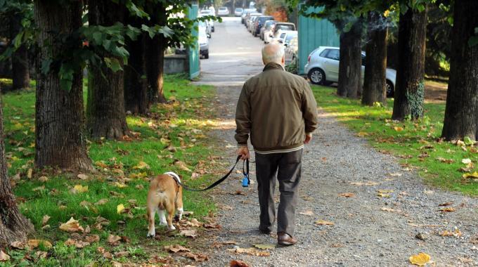 Uomo a spasso con cane